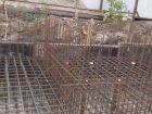 ЖК Военвед-Парк - ход строительства, фото 80, Июль 2019