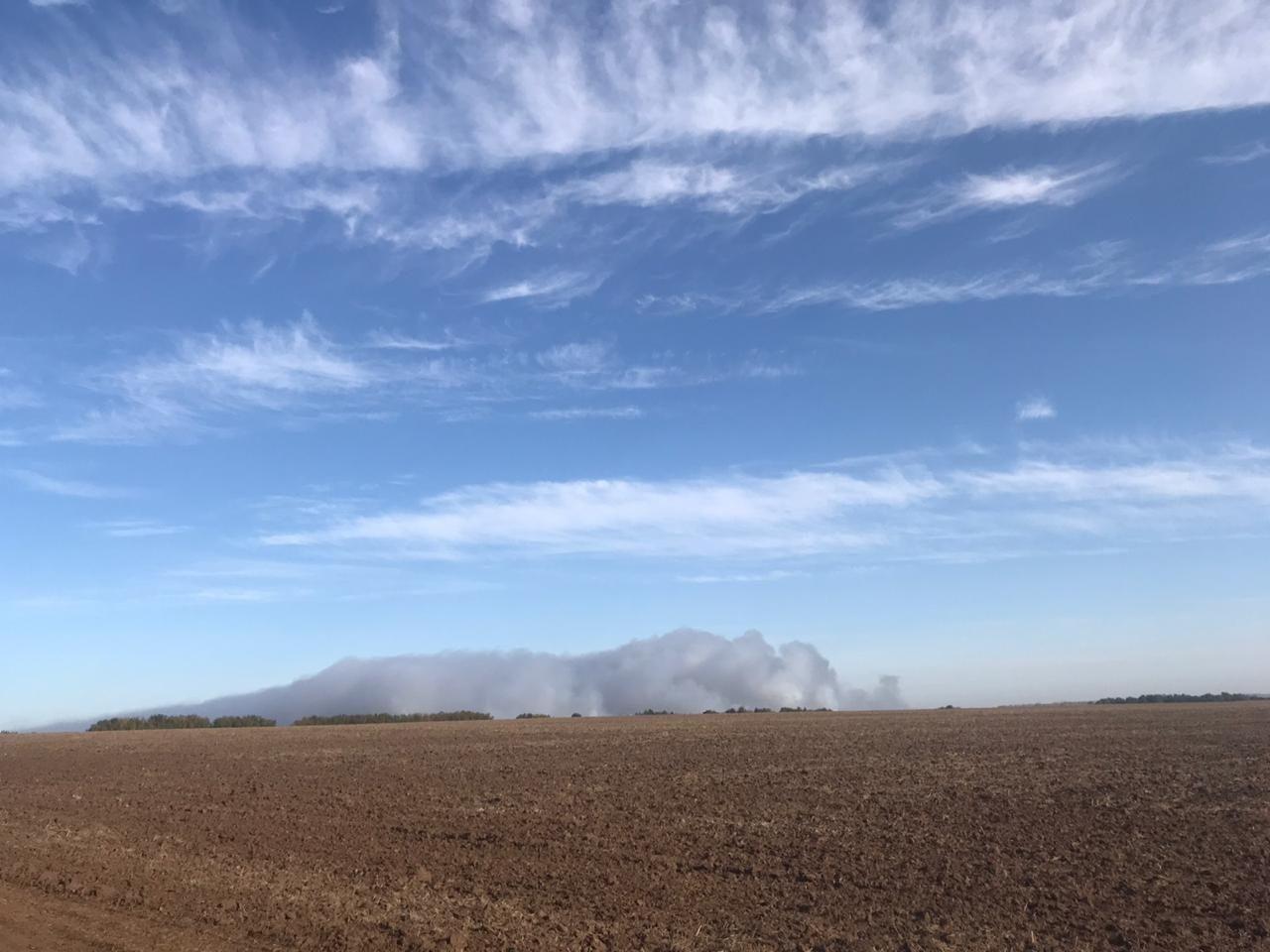Свалка ТБО продолжает гореть вБогородске - фото 1
